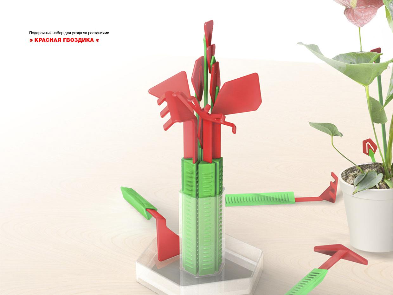 Уход за растением гвоздика